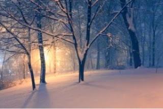 winter blues cure